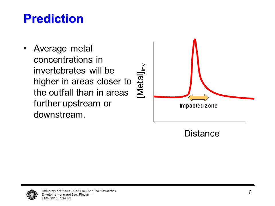 University of Ottawa - Bio 4118 – Applied Biostatistics © Antoine Morin and Scott Findlay 21/04/2015 11:25 AM 6 Prediction Average metal concentrations in invertebrates will be higher in areas closer to the outfall than in areas further upstream or downstream.