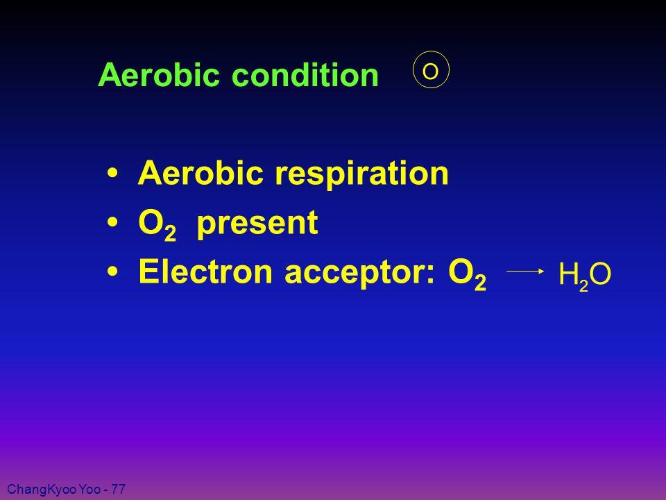 ChangKyoo Yoo - 77 Aerobic condition Aerobic respiration O 2 present Electron acceptor: O 2 H O 2 O
