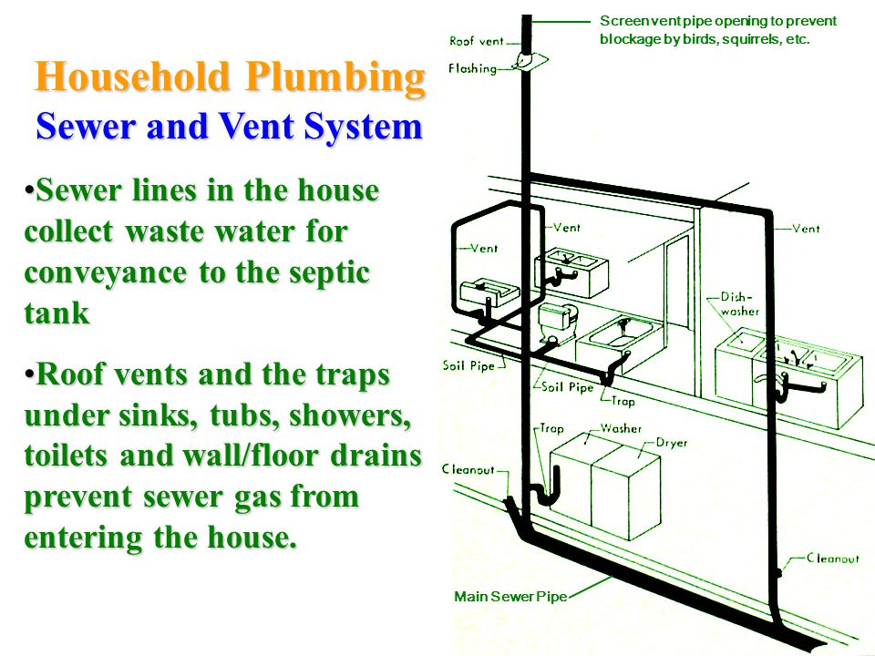 Household Plumbing Sewer and Vent System Sewer lines in the house collect waste water for conveyance to the septic tankSewer lines in the house collect waste water for conveyance to the septic tank Roof vents and the traps under sinks, tubs, showers, toilets and wall/floor drains prevent sewer gas from entering the house.Roof vents and the traps under sinks, tubs, showers, toilets and wall/floor drains prevent sewer gas from entering the house.