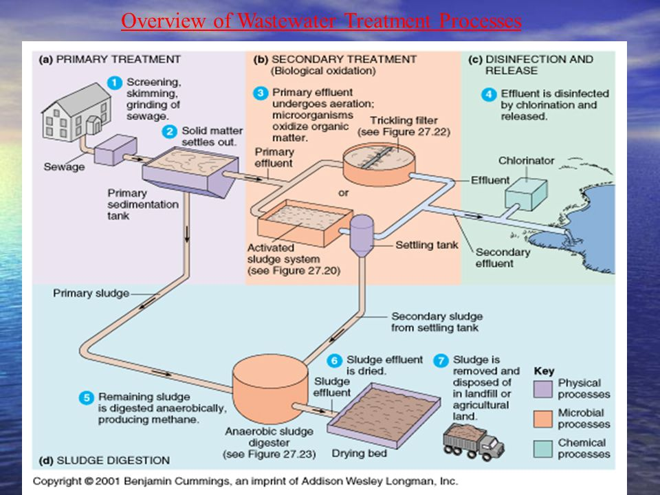 Overview of Wastewater Treatment Processes