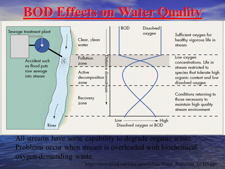 BOD Effects on Water Quality BOD Effects on Water Quality All streams have some capability to degrade organic waste. Problems occur when stream is ove