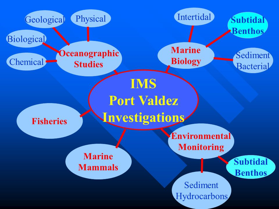 IMS Port Valdez Investigations Oceanographic Studies Geological Physical Biological Chemical Fisheries Environmental Monitoring Marine Biology Marine Mammals Intertidal Subtidal Benthos Sediment Bacterial Sediment Hydrocarbons Subtidal Benthos