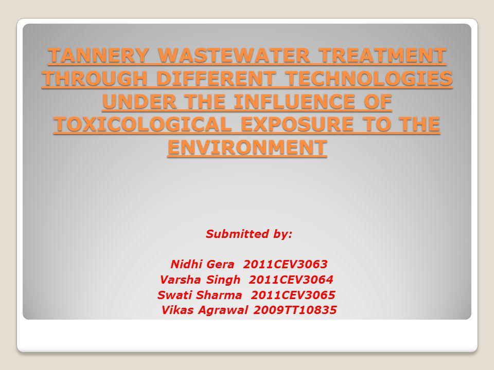 Rhizofiltration allows in-situ treatment, minimizing disturbance to the environment.