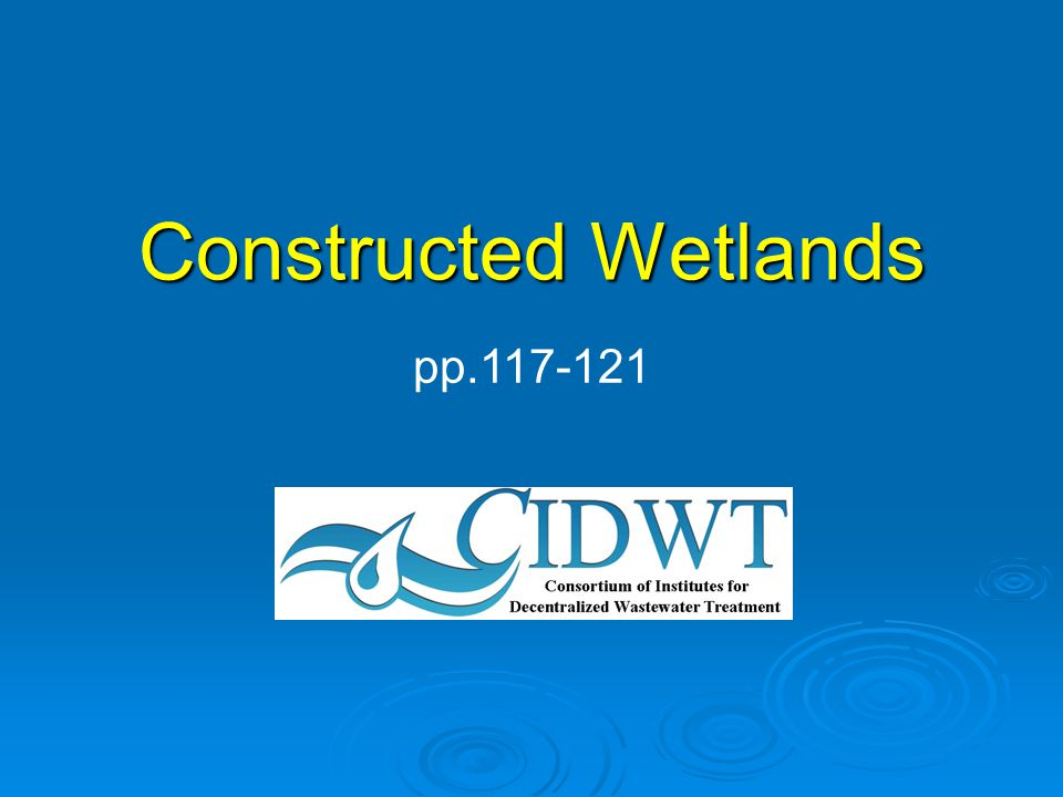 2.Conditions at the constructed wetland (cont.) e.