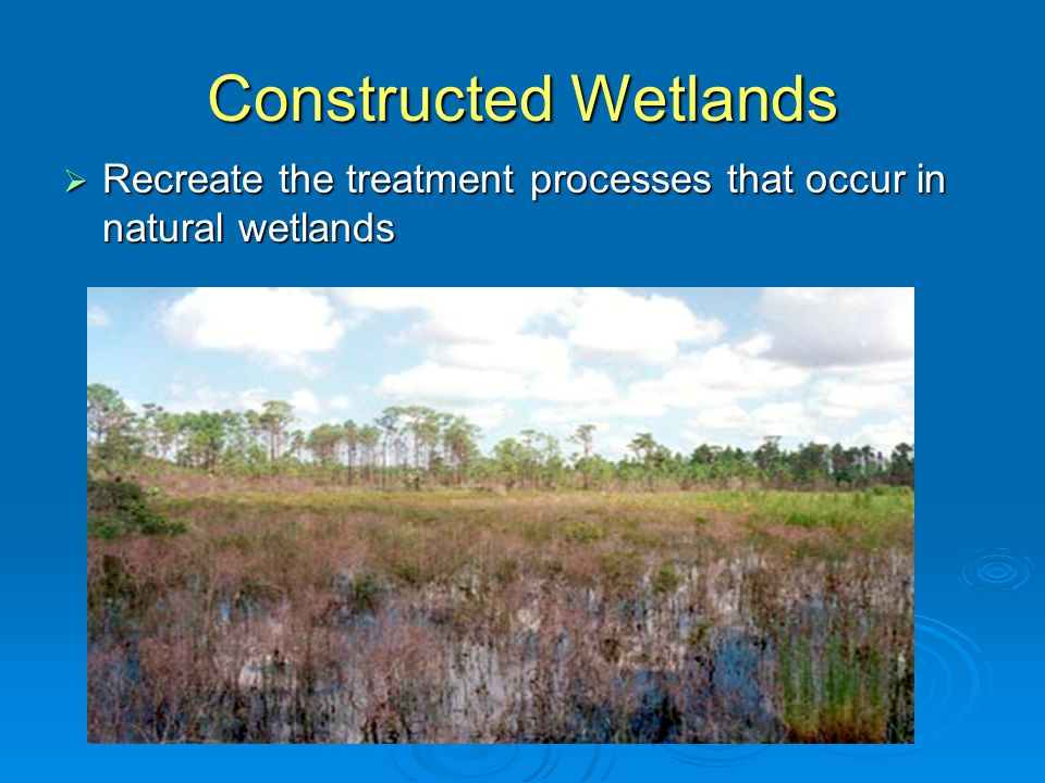 Constructed Wetland  Basin/cell containing microorganisms, media and plants that provide treatment of incoming effluent  Effluent flows horizontally through the bed