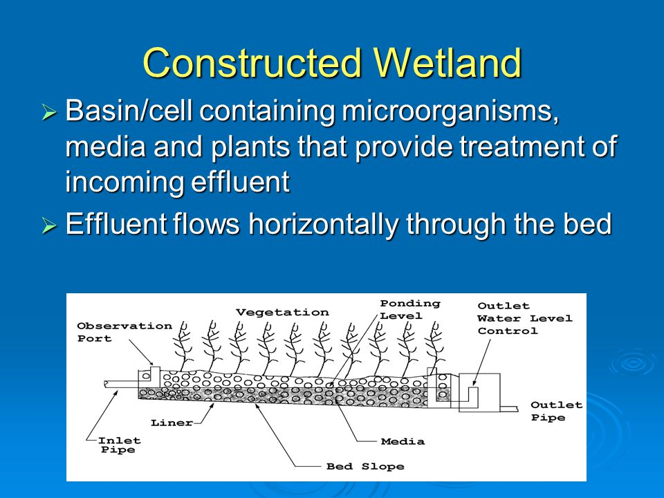 Constructed Wetland  Basin/cell containing microorganisms, media and plants that provide treatment of incoming effluent  Effluent flows horizontally through the bed