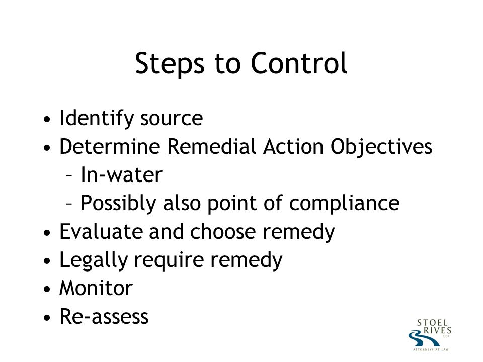 Steps to Control Identify source Determine Remedial Action Objectives –In-water –Possibly also point of compliance Evaluate and choose remedy Legally require remedy Monitor Re-assess