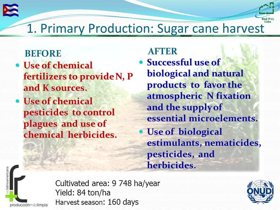 1. Primary Production: Sugar cane harvest BEFORE AFTER Use of chemical fertilizers to provide N, P and K sources. Use of chemical fertilizers to provi