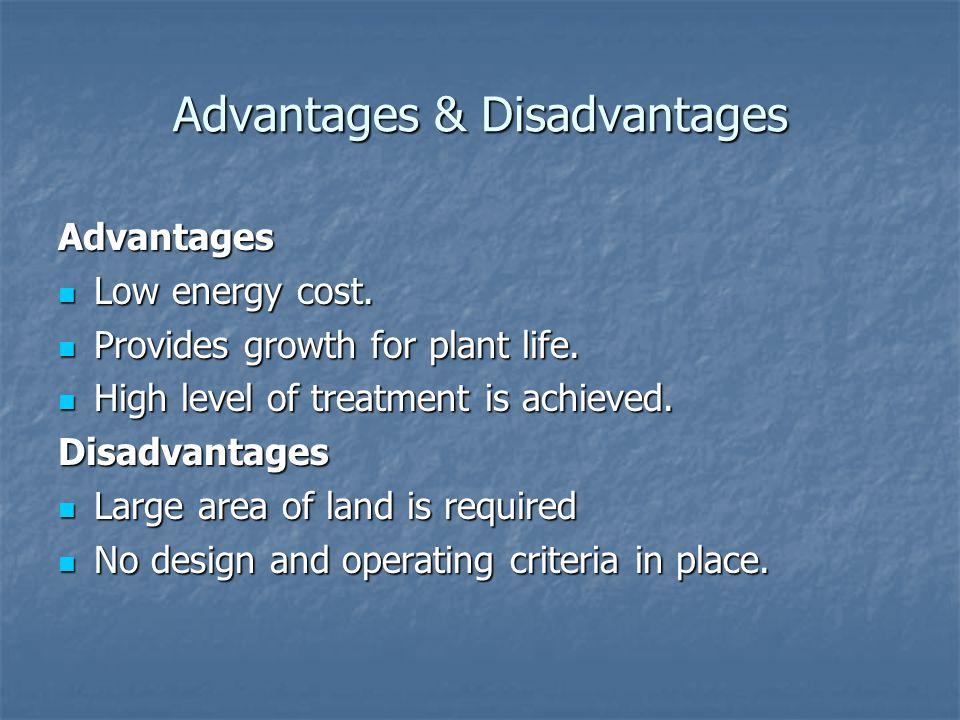 Advantages & Disadvantages Advantages Low energy cost. Low energy cost. Provides growth for plant life. Provides growth for plant life. High level of
