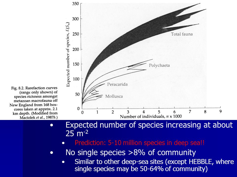 I.Deep Sea C.Diversity Rarefaction curves for most deep-sea habitats never approach an asymptote Expected number of species increasing at about 25 m -2 Prediction: 5-10 million species in deep sea!.