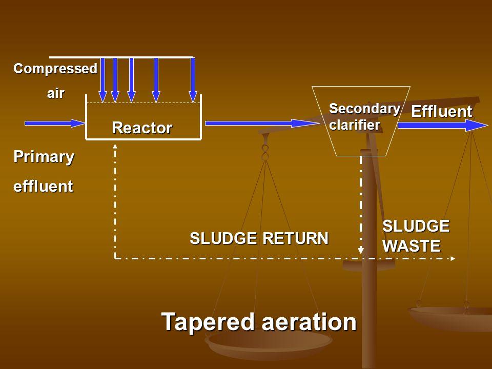 Secondaryclarifier Effluent SLUDGE RETURN SLUDGE WASTE Reactor Compressed air air Primaryeffluent Tapered aeration