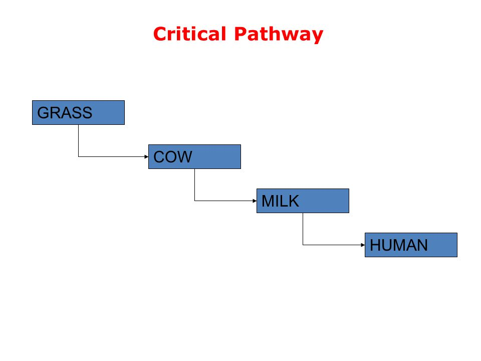 Critical Pathway HUMAN MILK COW GRASS