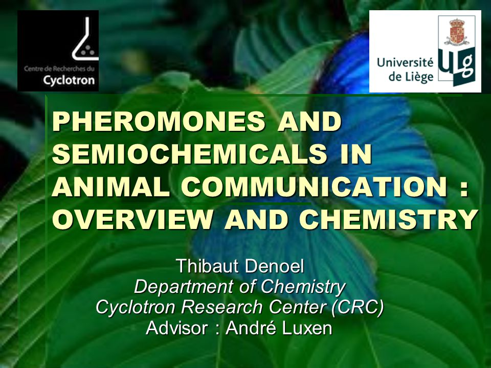 PHEROMONES AND SEMIOCHEMICALS IN ANIMAL COMMUNICATION : OVERVIEW AND CHEMISTRY Thibaut Denoel Department of Chemistry Cyclotron Research Center (CRC)