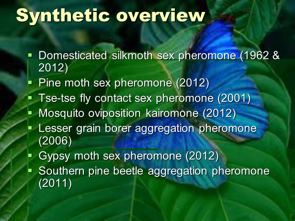 Synthetic overview  Domesticated silkmoth sex pheromone (1962 & 2012)  Pine moth sex pheromone (2012)  Tse-tse fly contact sex pheromone (2001)  M