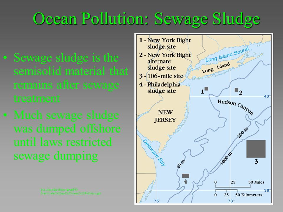 Ocean Pollution: Sewage Sludge Sewage sludge is the semisolid material that remains after sewage treatment Much sewage sludge was dumped offshore unti