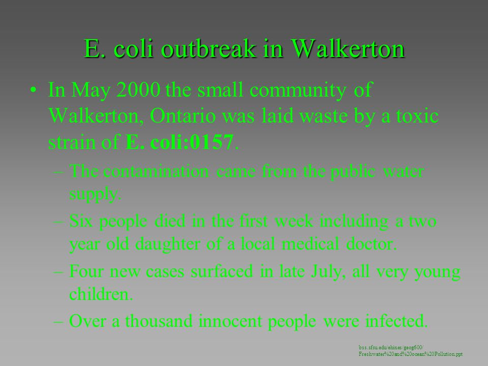 E. coli outbreak in Walkerton In May 2000 the small community of Walkerton, Ontario was laid waste by a toxic strain of E. coli:0157. –The contaminati