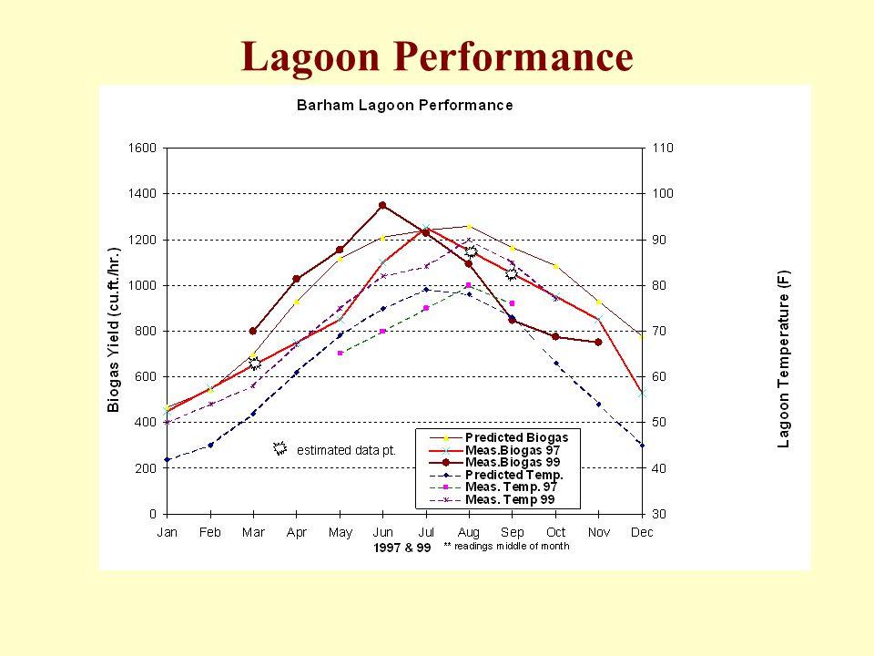 Lagoon Performance