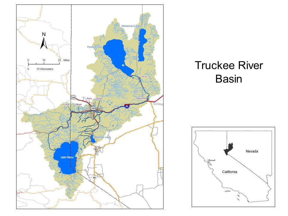 Study Goals Provide a description of the conditions and trends for TMDL water quality constituents Estimate loads of these constituents at key points in the Truckee River Relative impact of TMWRF effluent compared with other sources