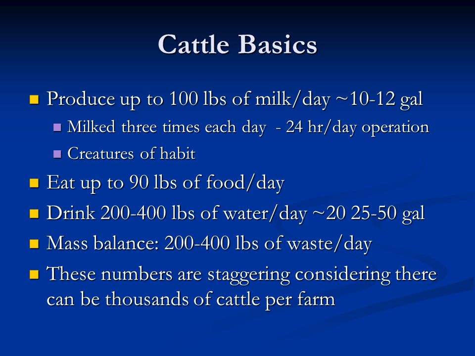 Cattle Basics Produce up to 100 lbs of milk/day ~10-12 gal Produce up to 100 lbs of milk/day ~10-12 gal Milked three times each day - 24 hr/day operation Milked three times each day - 24 hr/day operation Creatures of habit Creatures of habit Eat up to 90 lbs of food/day Eat up to 90 lbs of food/day Drink 200-400 lbs of water/day ~20 25-50 gal Drink 200-400 lbs of water/day ~20 25-50 gal Mass balance: 200-400 lbs of waste/day Mass balance: 200-400 lbs of waste/day These numbers are staggering considering there can be thousands of cattle per farm These numbers are staggering considering there can be thousands of cattle per farm
