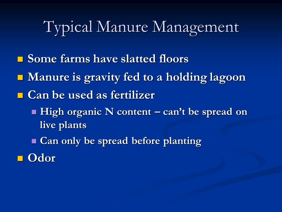 Typical Manure Management Some farms have slatted floors Some farms have slatted floors Manure is gravity fed to a holding lagoon Manure is gravity fed to a holding lagoon Can be used as fertilizer Can be used as fertilizer High organic N content – can't be spread on live plants High organic N content – can't be spread on live plants Can only be spread before planting Can only be spread before planting Odor Odor