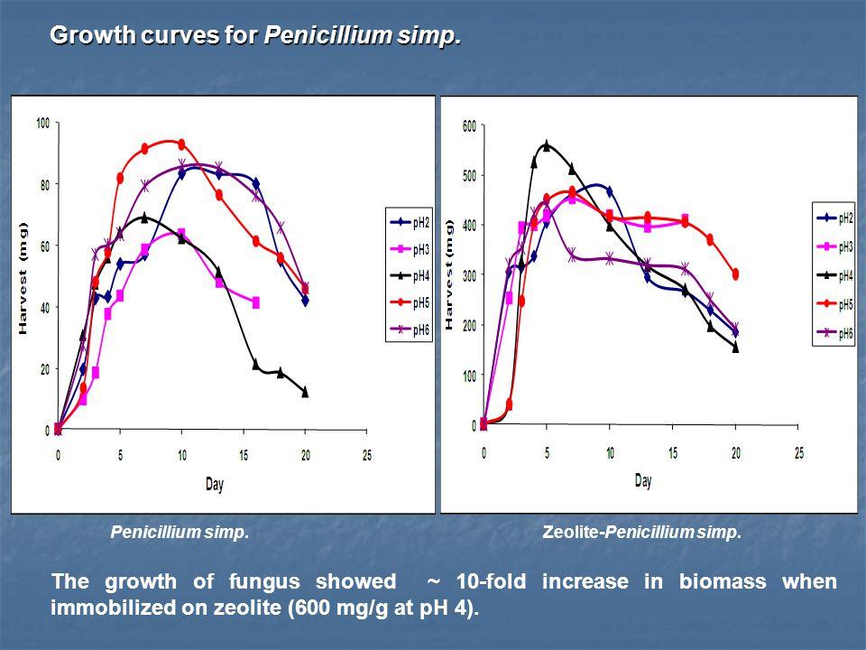 Penicillium simp.Zeolite-Penicillium simp. Growth curves for Penicillium simp.