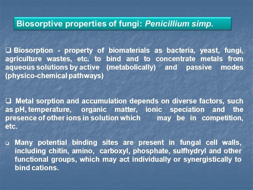 Biosorptive properties of fungi: Penicillium simp.