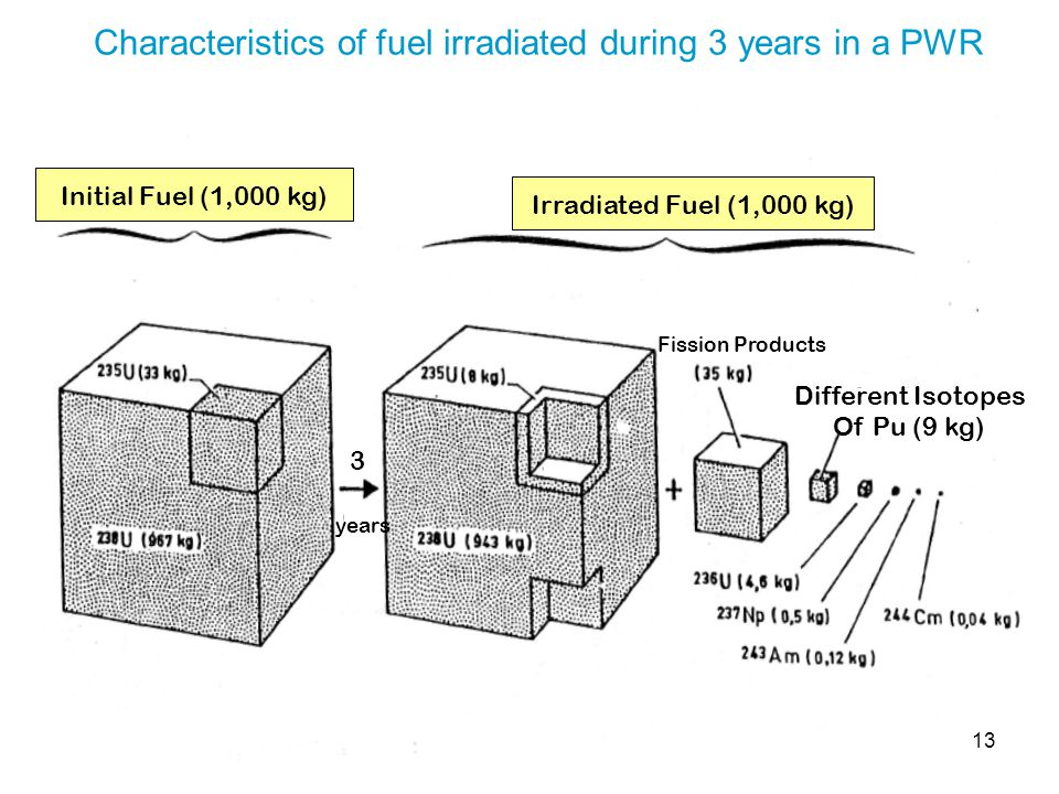 13 Characteristics of fuel irradiated during 3 years in a PWR Initial Fuel (1,000 kg) Irradiated Fuel (1,000 kg) 3 years Fission Products Different Is