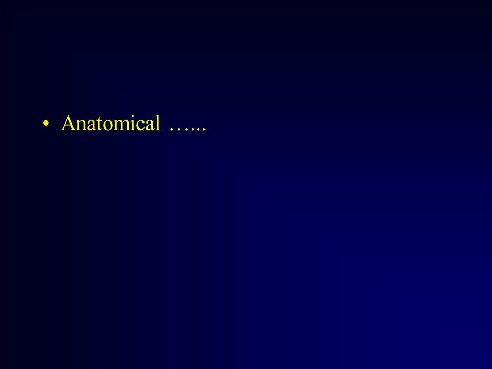 Anatomical …...
