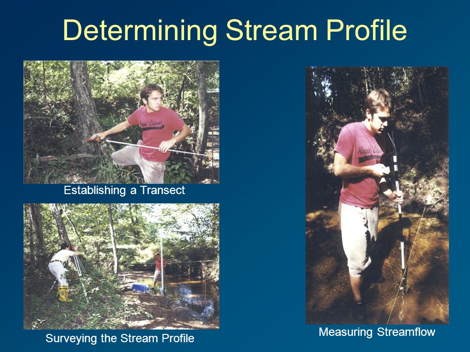 Determining Stream Profile Measuring Streamflow Establishing a Transect Surveying the Stream Profile