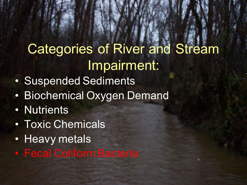Discharge Calculation Example: Stream Area = 5.558 ft 2 Water Velocity = 0.713 ft/sec Discharge = 3.964 ft 3 /sec Discharge or Q (ft 3 /sec) = velocity (ft/sec) X stream area (ft 2 )