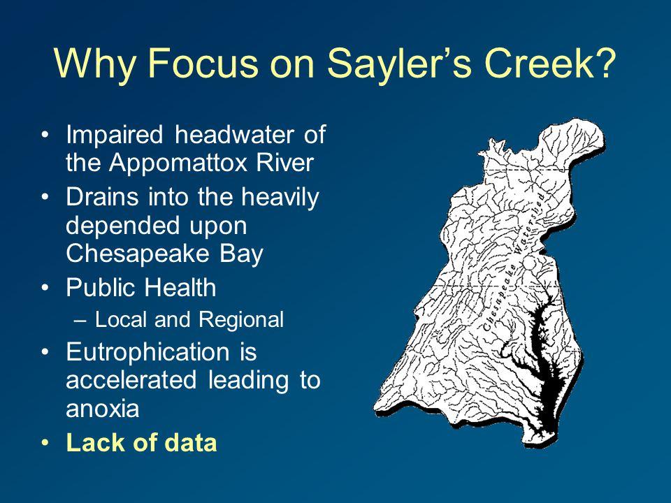 Why Focus on Sayler's Creek.
