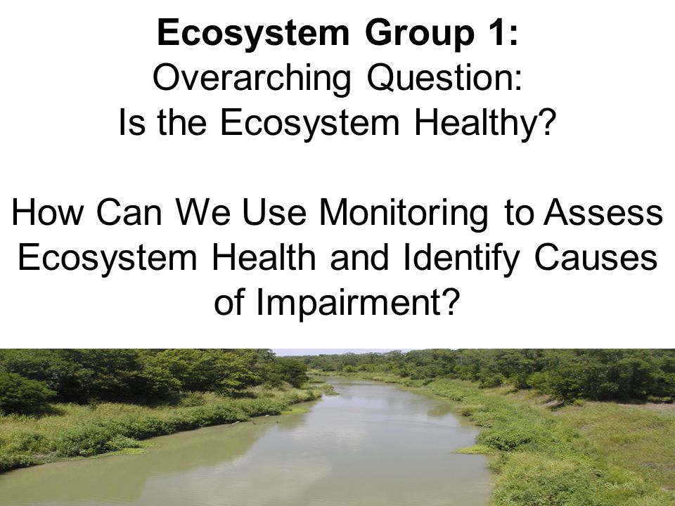 Ecosystem Group 1: Overarching Question: Is the Ecosystem Healthy.