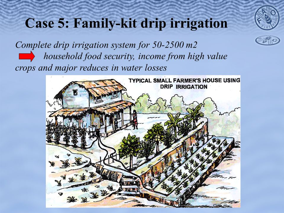 Case 5: Family-kit drip irrigation Complete drip irrigation system for 50-2500 m2 household food security, income from high value crops and major reduces in water losses
