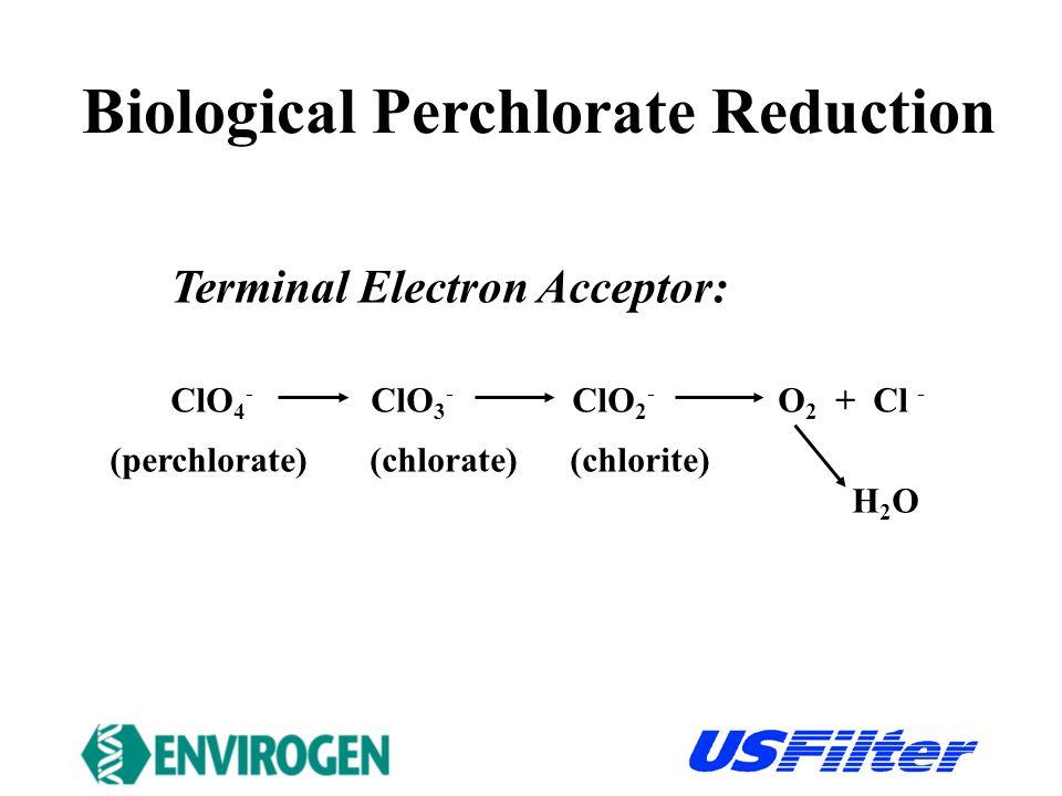 Terminal Electron Acceptor: ClO 4 - ClO 3 - ClO 2 - O 2 + Cl - (perchlorate) (chlorate) (chlorite) H 2 O Biological Perchlorate Reduction