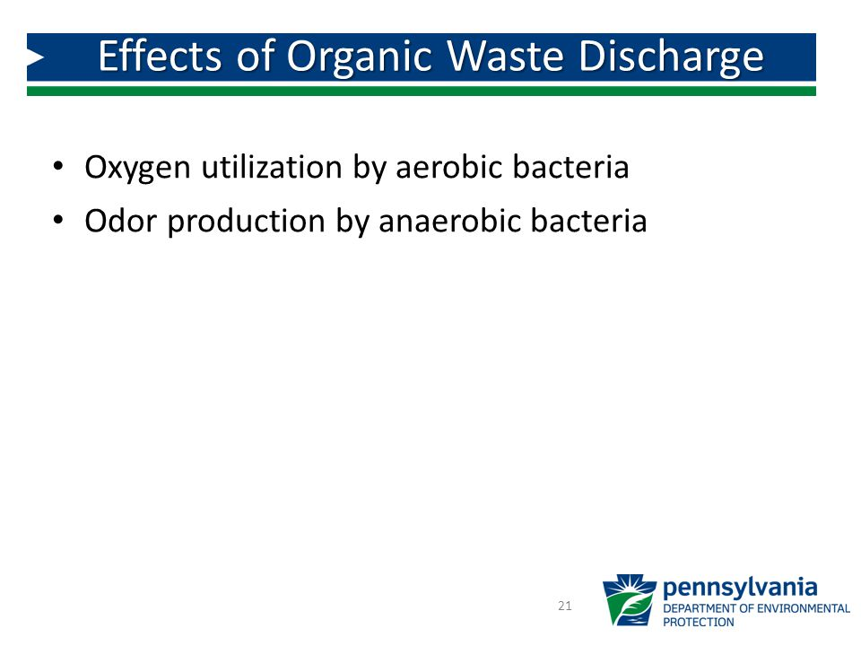 Oxygen utilization by aerobic bacteria Odor production by anaerobic bacteria 21 Effects of Organic Waste Discharge