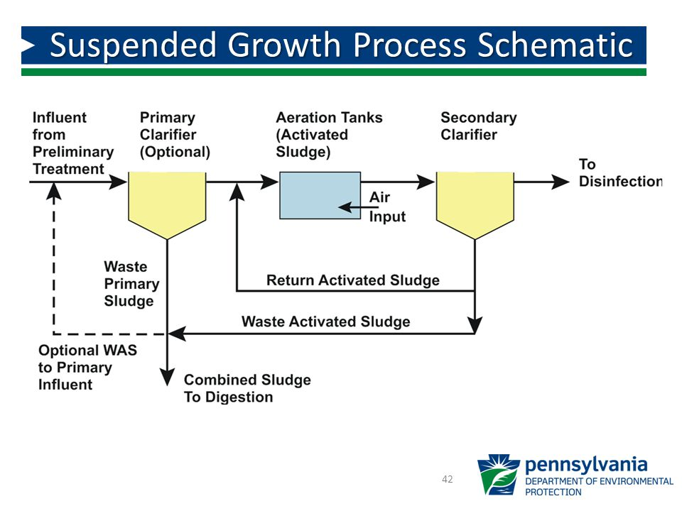 Suspended Growth Process Schematic 42
