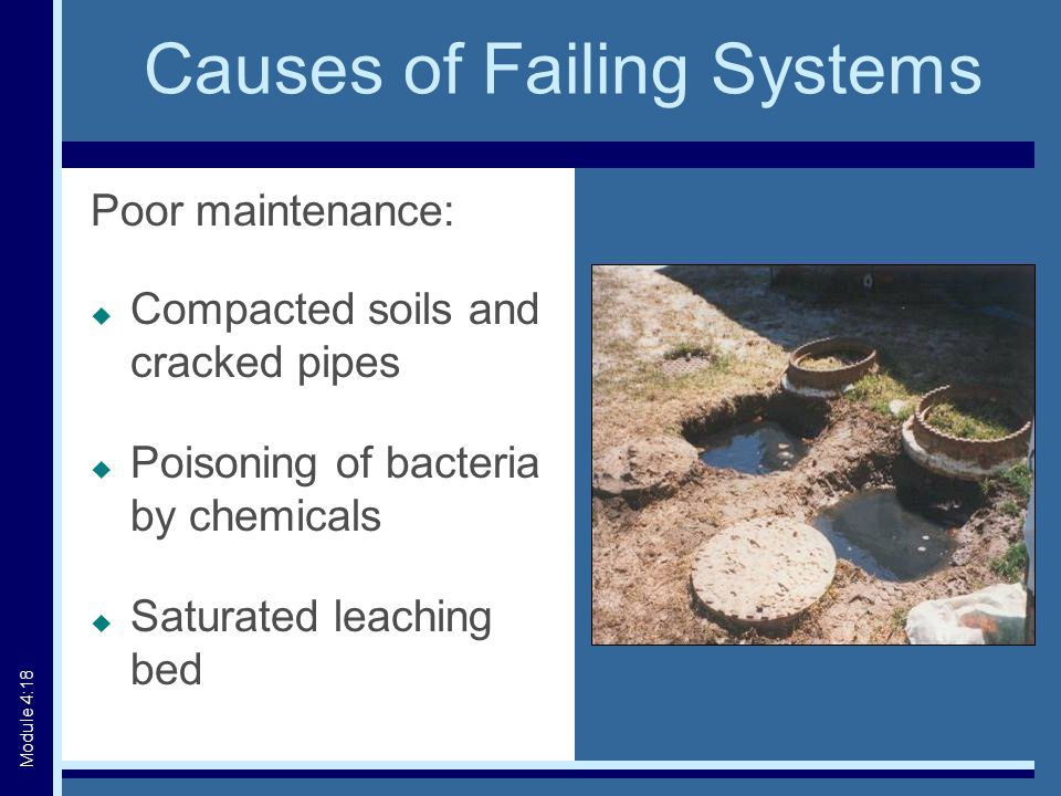 Causes of Failing Systems Poor maintenance:  Compacted soils and cracked pipes  Poisoning of bacteria by chemicals  Saturated leaching bed Module 4:18