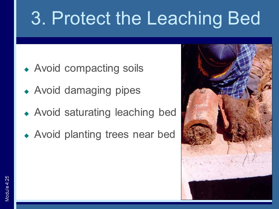 3. Protect the Leaching Bed  Avoid compacting soils  Avoid damaging pipes  Avoid saturating leaching bed  Avoid planting trees near bed Module 4:2