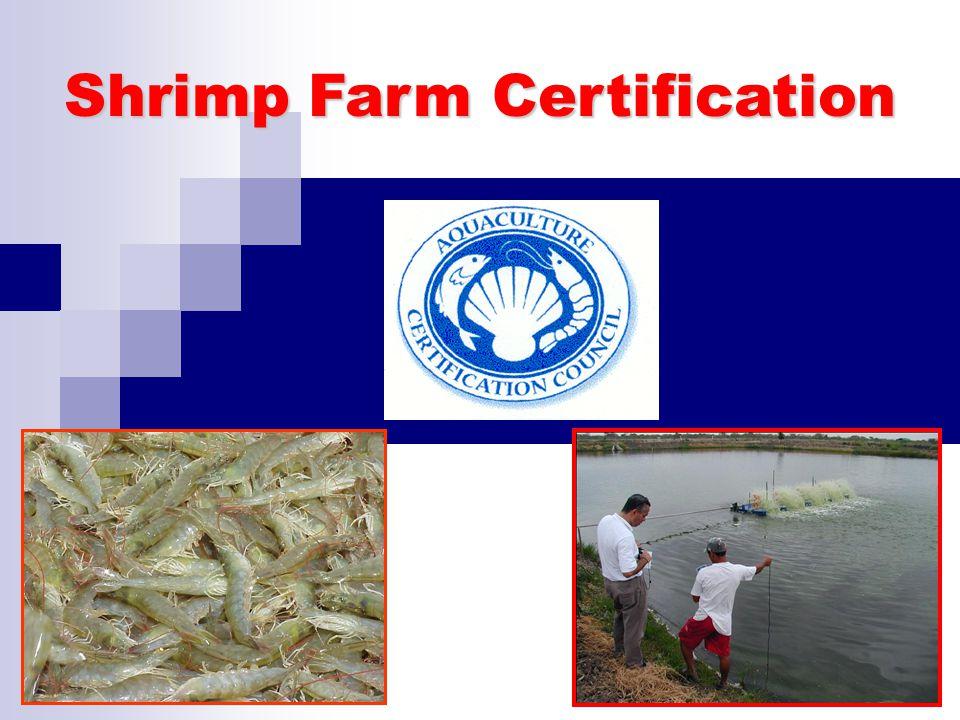 Shrimp Farm Certification