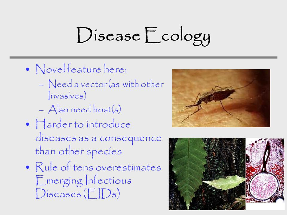Disease Ecology Novel feature here: –Need a vector (as with other Invasives) –Also need host(s) Harder to introduce diseases as a consequence than other species Rule of tens overestimates Emerging Infectious Diseases (EIDs)
