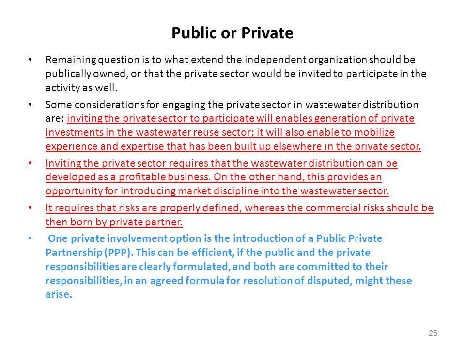 Public or Private Remaining question is to what extend the independent organization should be publically owned, or that the private sector would be invited to participate in the activity as well.