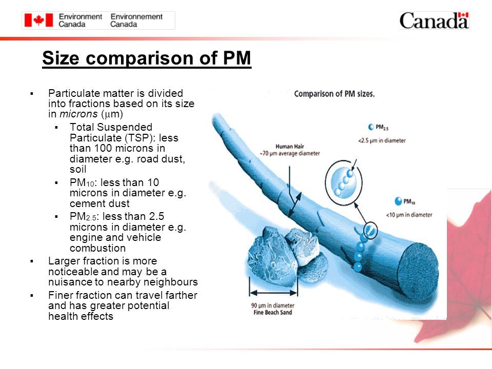Size comparison of PM  Particulate matter is divided into fractions based on its size in microns ( µ m)  Total Suspended Particulate (TSP): less than 100 microns in diameter e.g.