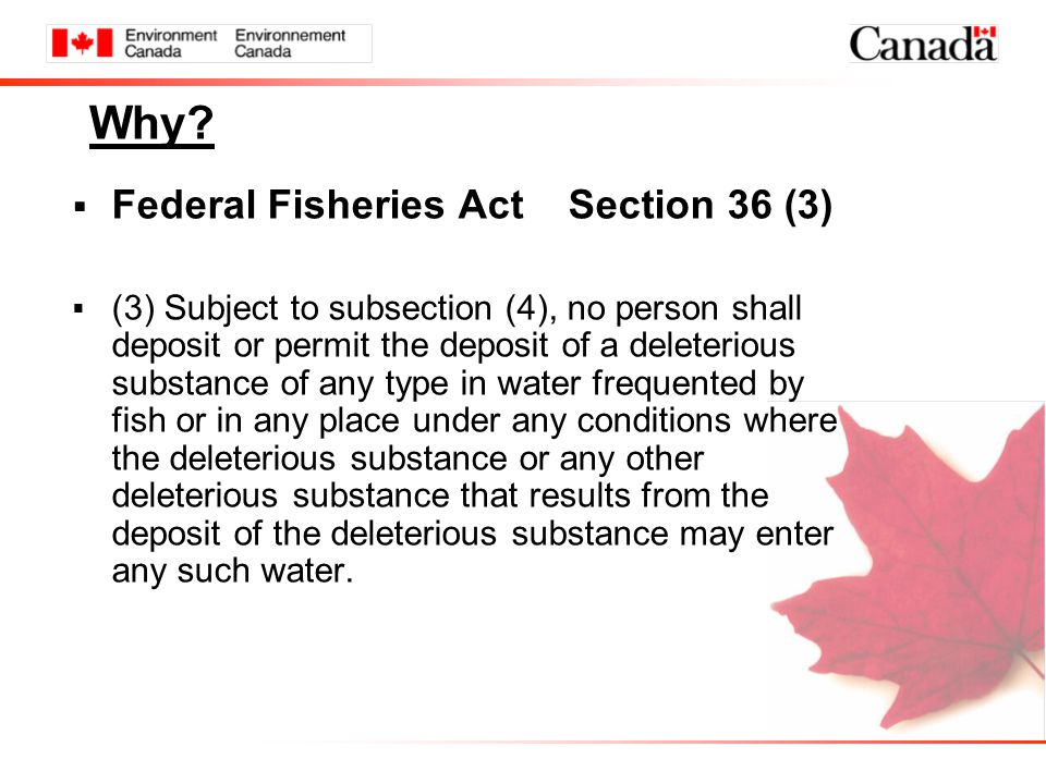 Why?  Federal Fisheries Act Section 36 (3)  (3) Subject to subsection (4), no person shall deposit or permit the deposit of a deleterious substance