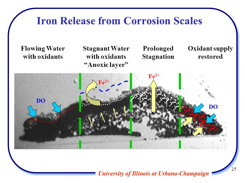 University of Illinois at Urbana-Champaign Iron Release from Corrosion Scales Flowing Water with oxidants Stagnant Water with oxidants Anoxic layer Prolonged Stagnation Oxidant supply restored Fe 2+ DO 25