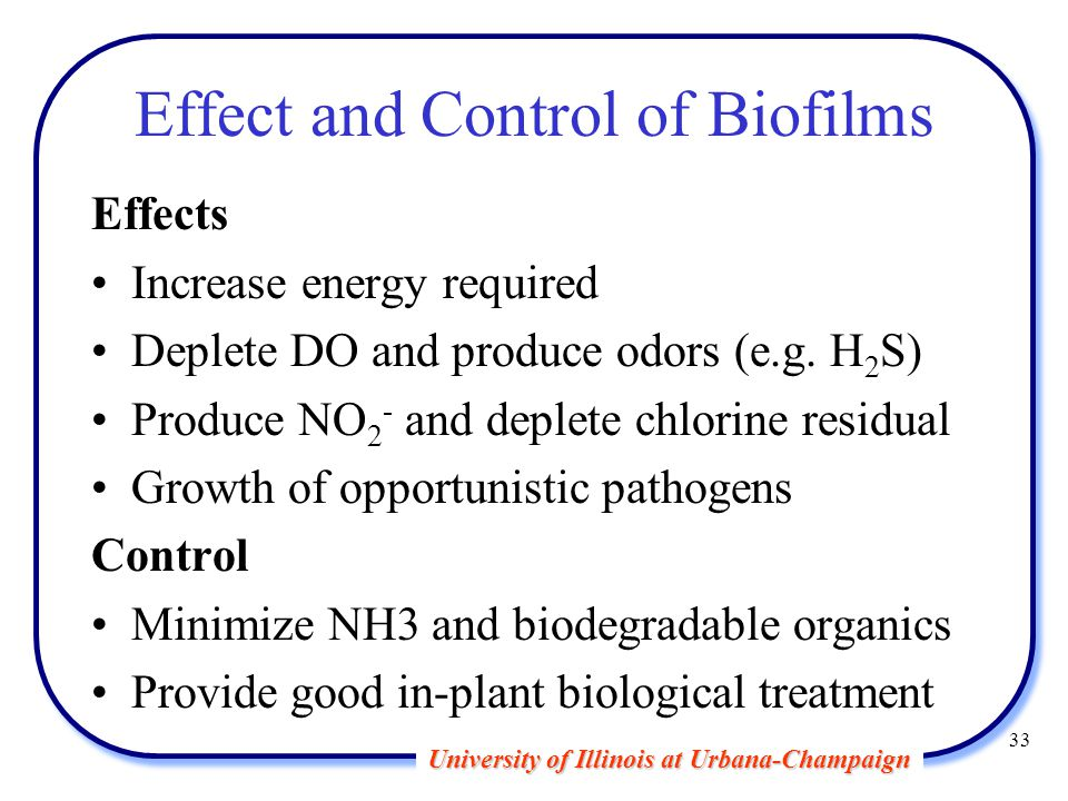 University of Illinois at Urbana-Champaign 33 Effect and Control of Biofilms Effects Increase energy required Deplete DO and produce odors (e.g.