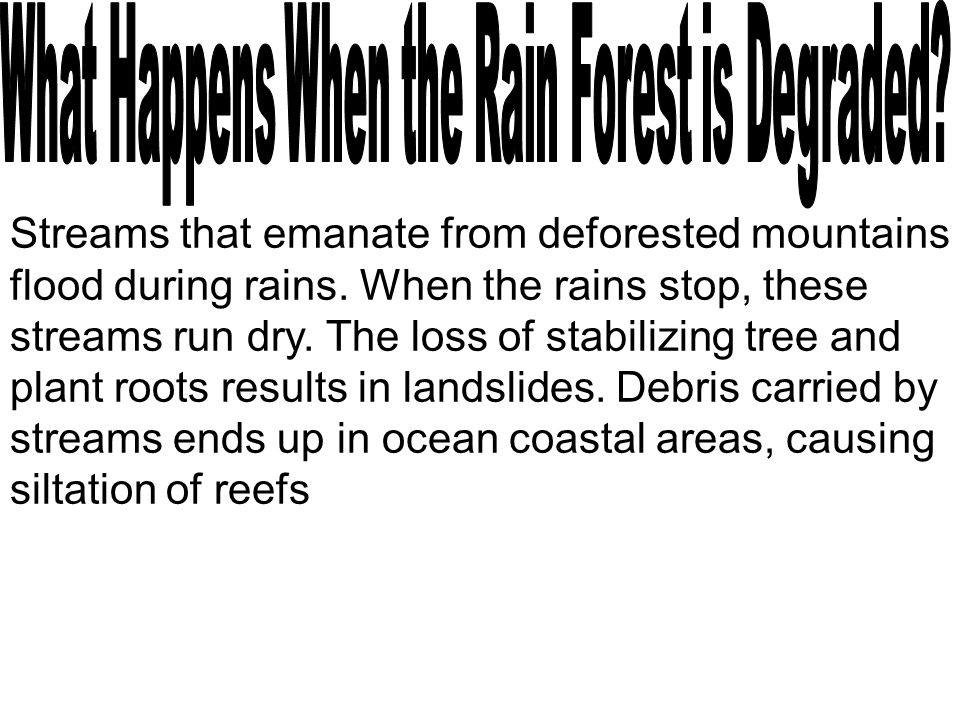 Streams that emanate from deforested mountains flood during rains. When the rains stop, these streams run dry. The loss of stabilizing tree and plant
