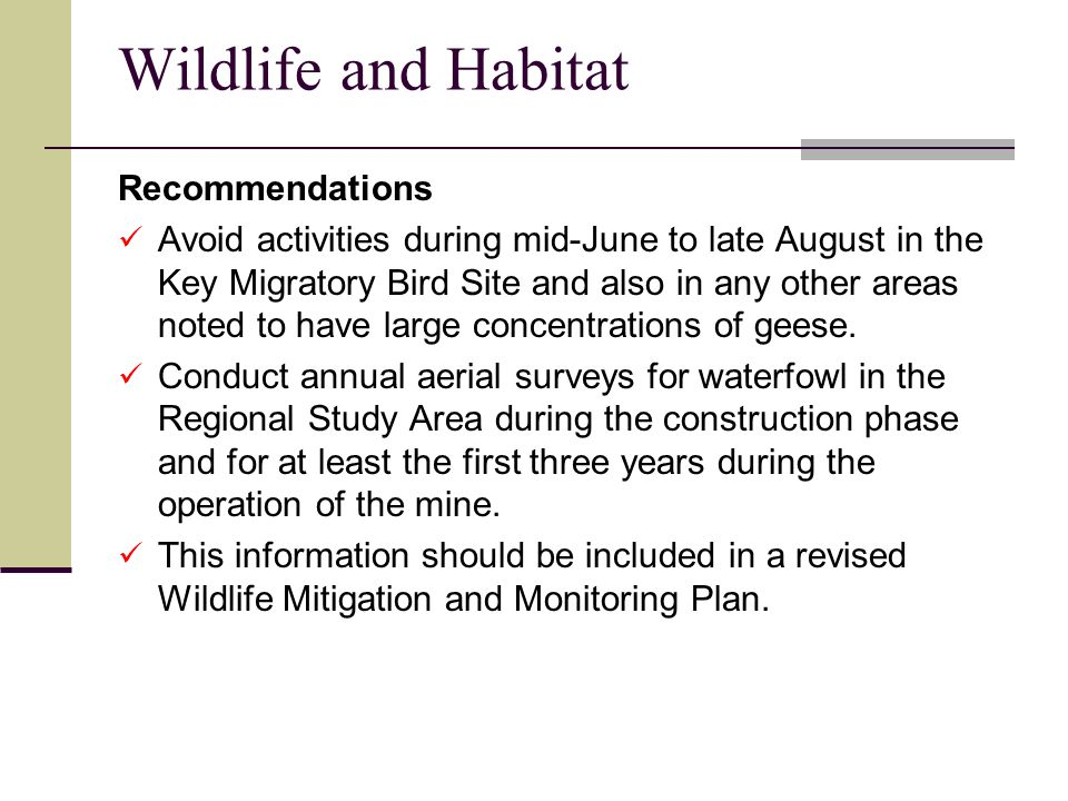 Wildlife and Habitat Recommendations Avoid activities during mid-June to late August in the Key Migratory Bird Site and also in any other areas noted to have large concentrations of geese.