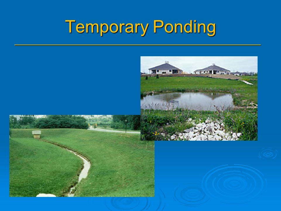 Temporary Ponding _______________________________________________
