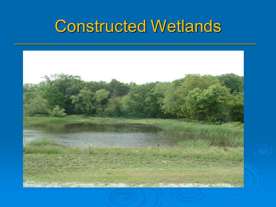 Constructed Wetlands _______________________________________________