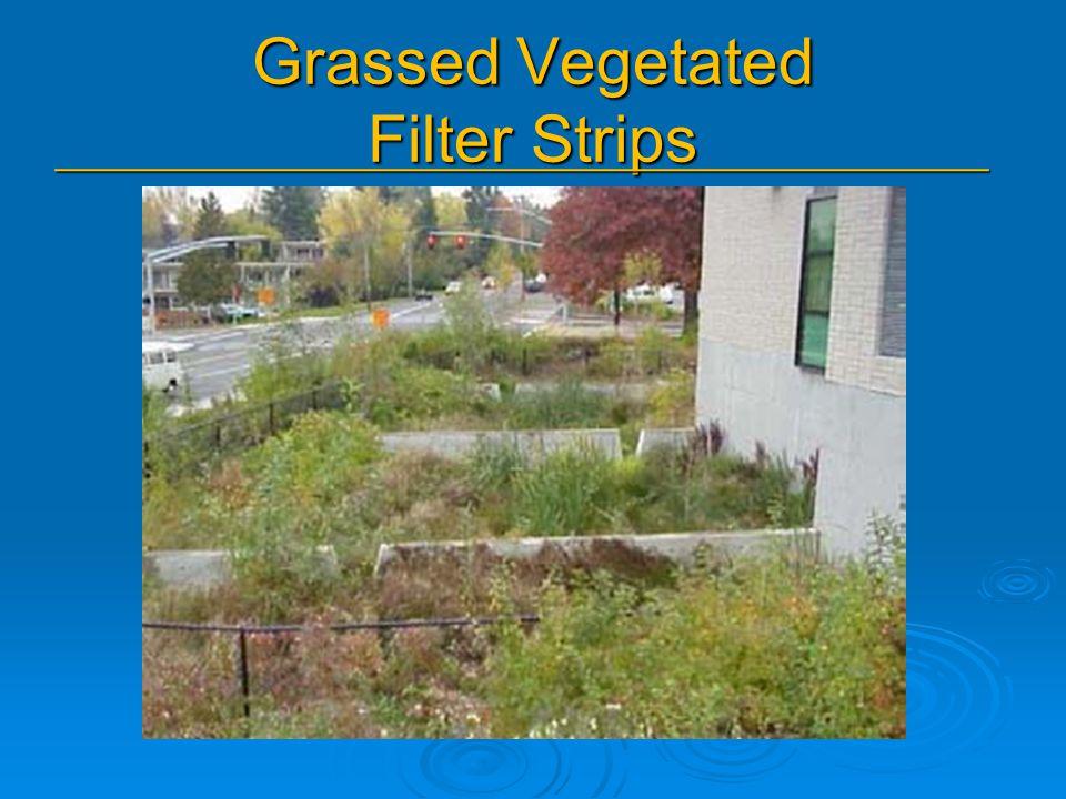 Grassed Vegetated Filter Strips _______________________________________________
